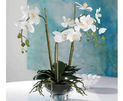 Artificial Orchids Artificial Orchids Phalaenopsis Cymbidium Bloom