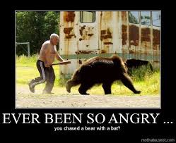 Bear Stuff Meme - have you ever been so angry meme funny angry bear lol lol
