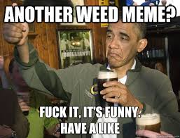 Funny Pot Memes - another weed meme funny image