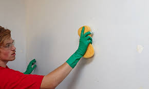 clean wall how to prepare walls for painting bunnings warehouse