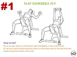 Flat Bench Db Fly Beginners Guide To Build Bigger Chest