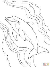 bottlenose dolphin coloring free printable coloring pages