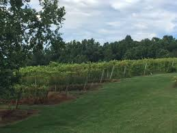 Virginia Bed And Breakfast Winery Glass House Winery Bed And Breakfast Updated 2017 Prices U0026 B U0026b