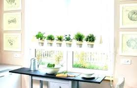 window herb harden indoor hanging herb garden indoor window garden window hanging herb