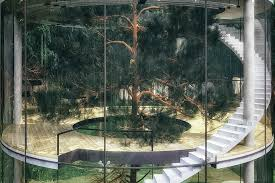 glass tree house uncrate