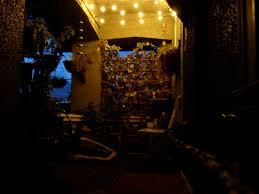 porch at night may 2010 u2013 amateur bot ann ist