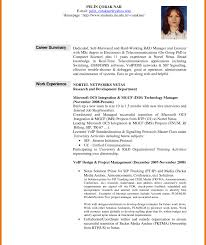 career summary statement exles accounting software it resume summary statement exles peppapp administrative human