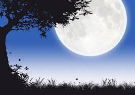 imagenes tiernas buenas noches amor mensajes de buenas noches para mi amor frases de buenas noches