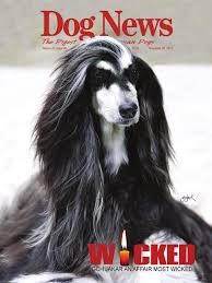 afghan hound calendar 2015 dog news october 23 2015 by dn dog news issuu