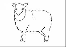 incredible printable sheep coloring pages lamb coloring