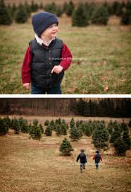 o christmas tree granville ohio timbuk farms family photographer