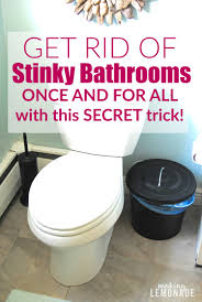 bathrooms best bathroom cleaning tips get rid of stinky bathrooms once and for all lemonade
