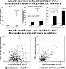renal albumin excretion hypertension