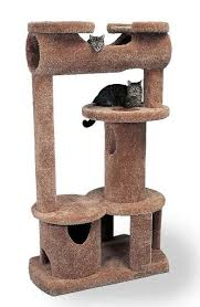 Modern Cat Trees Furniture by Best 25 Cat Towers Ideas On Pinterest Cat Condo Diy Cat Tree