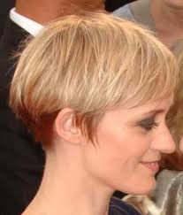 original dorothy hamill haircut wedge haircut discussion on the kingwood com forums do you