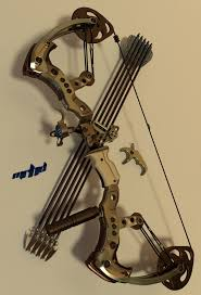 Archery Cabinet 17 Best Images About Archery On Pinterest Archery Compound Bows