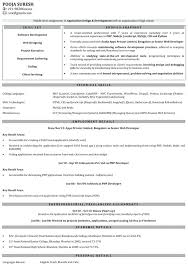 sample experienced resume software engineer download web developer