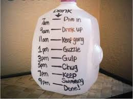 Challenge Causes 15 Best Gallon Water Challenge Images On Diets