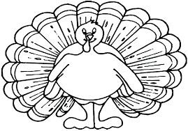 simple coloring page beautiful turkey color thanksgiving day from