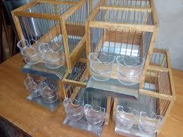 gabbie per gabbie per canarini da canto a barcellona pozzo di gotto kijiji