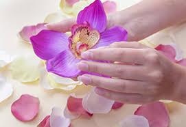 nail salon omaha nail salon 68144 nail perfection u0026 spa