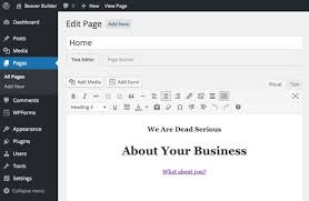wordpress theme editor gone wordpress page builder plugin beaver builder