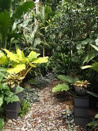 3482 best tropical gardening images on pinterest landscaping