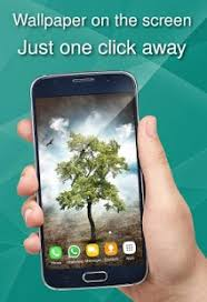 wallpaper with trees appmarket android apps in google play