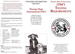 Comfort Dogs Certification Therapy U0026 Service Dog Information K9 Fun Works El Paso Tx