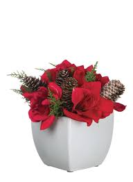 baby nursery licious compare prices christmas flower online