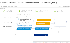 objectives of financial statement analysis strategy integrated performance analysis sap integrated report cause and effect chain for the business health culture index bhci