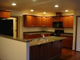 Replace Fluorescent Light Fixture In Kitchen by Kitchen Lighting Can Lights In Drum Clear Coastal Glass Gray