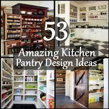 kitchen closet design ideas 53 amazing kitchen pantry design ideas diy home creative
