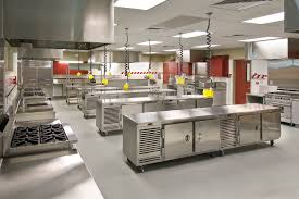 profesional kitchen home design great luxury with profesional