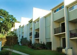 one bedroom apartments tallahassee fl tallahassee one bedroom apartments home design game hay us