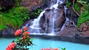 Beatuful Beautiful Waterfall Photo Hd Wallpapers Free