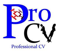The Best Resume Writing Service by The 25 Best Cv Writing Service Ideas On Pinterest Professional