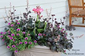 simple colorful planter ideas for sun