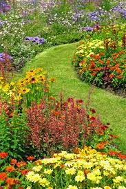Plants For Front Yard Landscaping - 20 best yard landscaping ideas for front and backyard