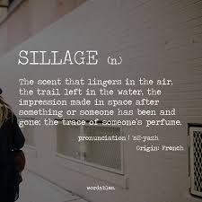 sillage n the scent that lingers in the air the trail left in