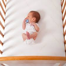 Sealy Soybean Everedge Crib Mattress by Sealy Soybean Everedge Crib Mattress Sealy Babies