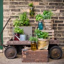 italian herb jar kit for sale at jp