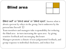 What Is The Blind Spot Techniques Of Self Awareness Ppt Video Online Download