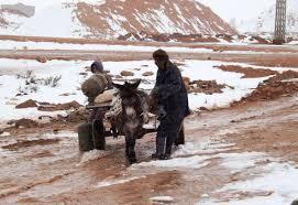 heavy snow fall in the sahara images of algeria billnelson