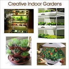 indoor planting vegetable gardening