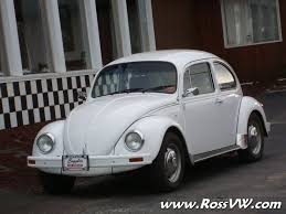 1995 mexican beetle rossvw com