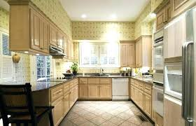 Whitewashed Kitchen Cabinets White Washed Cabinet Doors Whitewash Kitchen Cabinets Photos