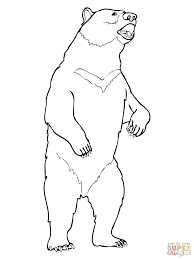 teddy bear pictures color bears coloring pages images love sheets