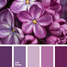 Purple Color Shades Cool Shades Of Purple Color Palette Ideas