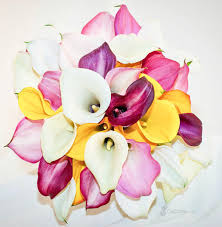 Lily Bouquet Mixed Signature Calla Lily Bouquets Beautiful Calla Lily